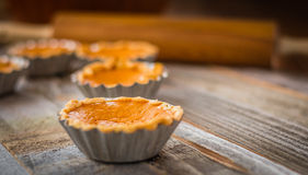 Miniature pumpkin pies Stock Images