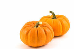 Miniature pumpkins. On white background with copy space Stock Photography