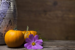 Miniature pumpkins, a homemade ceramic vase, and a purple flower. A still life of a homemade ceramic vase in azure, with two small miniature pumpkins and a Stock Photos