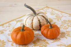 Miniature Pumpkins Stock Photos