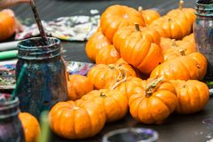 Miniature Pumpkins Wait To Be Painted At Fall Festival Stock Photography