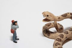 Miniature of a reporter in front of a giant snake Royalty Free Stock Photos