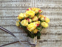 Yellow roses on old music background Stock Images