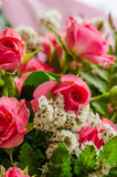 Miniature roses in bouquet Stock Photo