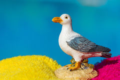 Miniature seagull Royalty Free Stock Photography