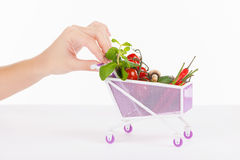 Miniature shopping cart Royalty Free Stock Image