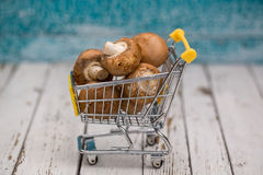 Miniature shopping cart with mushrooms Stock Photos