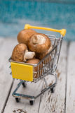 Miniature shopping cart with mushrooms Stock Images