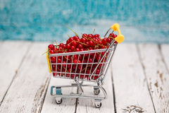 Miniature shopping cart with red currants Stock Photo