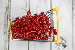 Miniature shopping cart with redcurrants Stock Photos