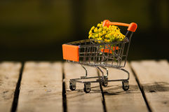 Miniature shopping trolley sitting on wooden surface with bouquet of yellow flowers inside it, magicians concept.  Stock Image