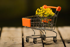 Miniature shopping trolley sitting on wooden surface with bouquet of yellow flowers inside it, magicians concept Stock Image