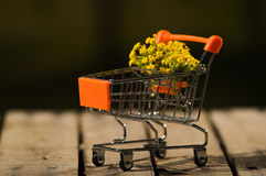Miniature shopping trolley sitting on wooden surface with bouquet of yellow flowers inside it, magicians concept.  Stock Photos