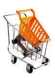 Miniature Shopping Trolleys Royalty Free Stock Photos