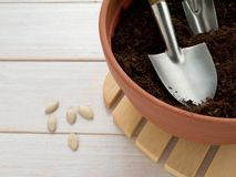 Miniature shovel in the pot Royalty Free Stock Image