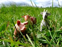 Miniature toy farm animals in the grass Stock Photos