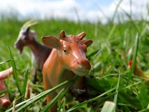 Miniature toy farm animals in the grass Royalty Free Stock Photography