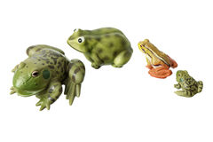 Miniature Toy Frogs Royalty Free Stock Photography