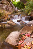Miniature waterfall and fall leaves Stock Photo