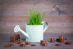 Miniature watering pot with fresh green spring grass and small change. Abstract background for business and development Royalty Free Stock Images