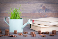 Miniature watering pot with fresh green spring grass and small change. Abstract background for business and development Stock Image