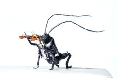 Miniature of wooden bug Stock Image