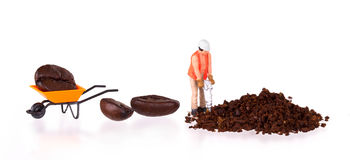 Miniature worker working on a coffee bean Royalty Free Stock Photography