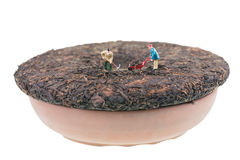 Miniature workers on compressed Pu-erh chinese tea Royalty Free Stock Photos