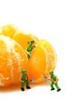Miniature workers Mandarin Satsuma Royalty Free Stock Photography