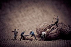 Miniature with workers and walnut. Color tone tuned macro photo royalty free stock photo
