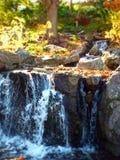 Miniatureffekt des kleinen Wasserfalls Park im im Freien lizenzfreies stockfoto