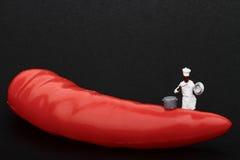 Miniaturen des Kochs und des glühenden Paprikapfeffers Lizenzfreie Stockfotografie
