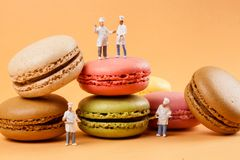 Miniatures peoples : chefs in front of delicious macaroons stock photos
