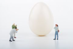 Miniatures of photographers and egg. Photographers miniatures taking pictures of an egg stock photography