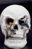 Miniaturfigürchen von Bergsteigern auf einem Schädel Stockfotografie