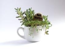 Miniaturgartenarbeit Stockbild