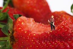 Miniaturleute Lizenzfreie Stockfotografie