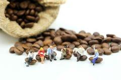 Miniaturleute: das Geschäftsteam, das auf Kaffeebohnen sitzt, entspannen sich c lizenzfreie stockbilder