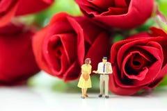 Miniaturleute: Paare der Liebe mit Rotrose, -liebhaber oder -valenti Stockfotos
