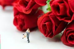 Miniaturleute: Paare der Liebe mit Rotrose, -liebhaber oder -valenti Lizenzfreie Stockbilder