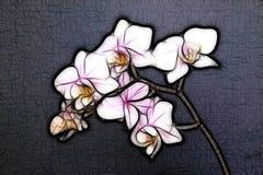 miniaturowa orchidea Zdjęcia Royalty Free