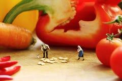 Miniaturowe lale gotuje warzywa Zdjęcia Royalty Free