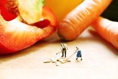 Miniaturowe lale gotuje warzywa Zdjęcia Stock