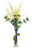Miniaturowe orchidee i eryngium kwiaty w wazie odizolowywającej na whit Zdjęcia Stock
