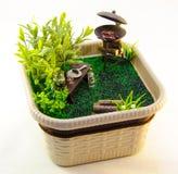 Miniaturowego grilla ajerówki natury ogórkowy krzak zdjęcia stock