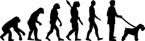 Miniaturowego Schnauzer ewolucja ilustracja wektor