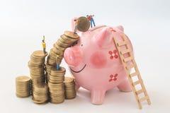 Miniaturowi ludzie drużyn próbują ruszać się monety od sterty świnia Fotografia Stock