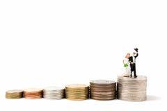 Miniaturowi ludzie poślubia na stert monetach na białym tle Obraz Stock