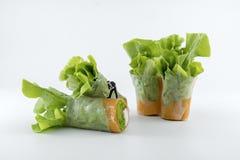 Miniaturowi ludzie pracownika głębienia w sałatkę świeżych warzyw rolki Obraz Stock