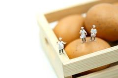 Miniaturowi ludzie: Szef kuchni podczas kucharstwa i działanie z jajkami Zdjęcie Royalty Free